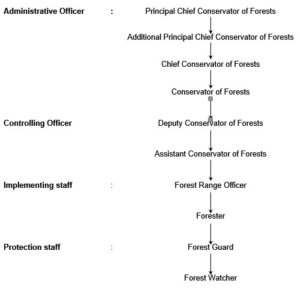 forest officers chronology