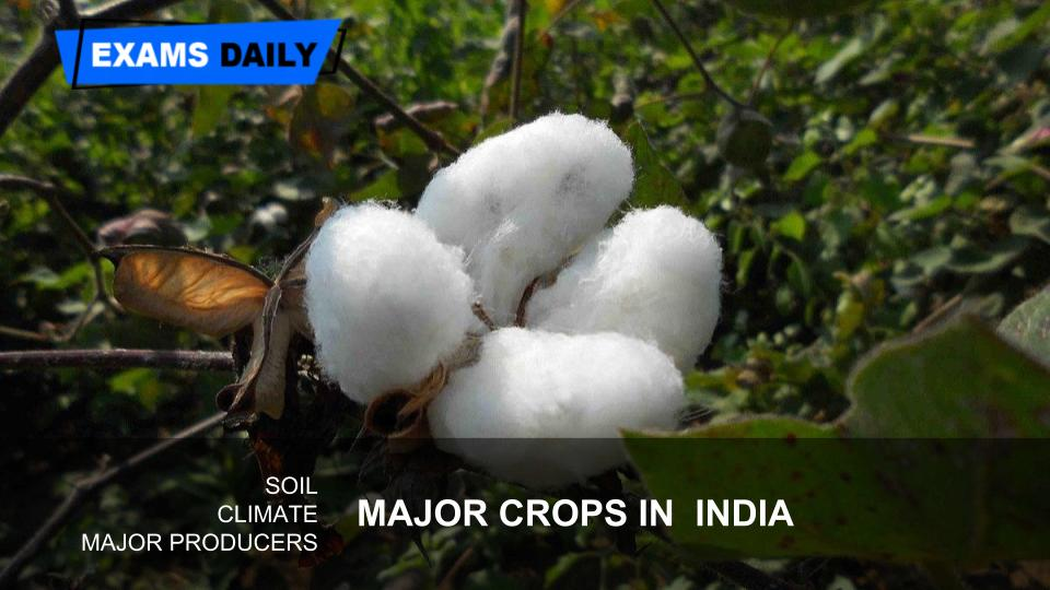 Major crops and producing States, Nations | Exams Daily