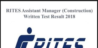 Rail India Technical and Economic Service assistant manager